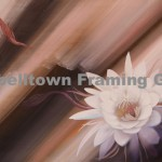 Original Arwork for Sale at Campbelltown Framing Gallery flower