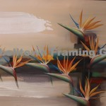 Original Arwork for Sale at Campbelltown Framing Gallery flowers bird of paradise