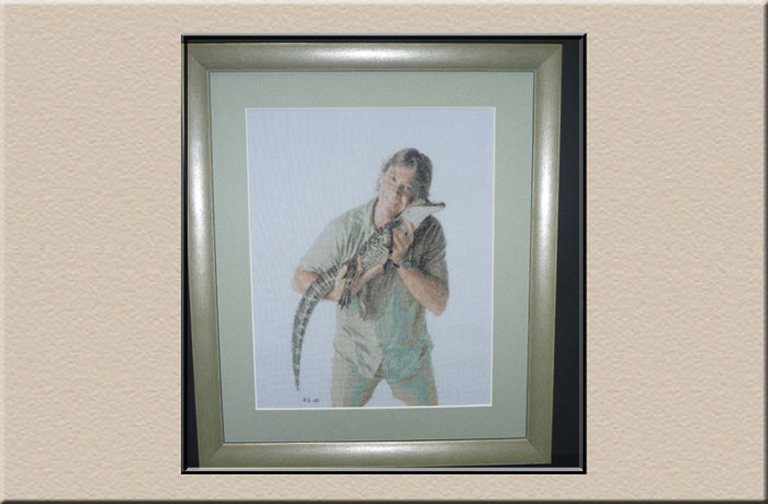 steve irwin crocodile hunter at campbelltown framing gallery