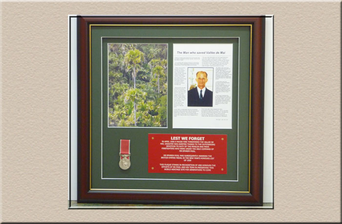 framig medals with certificates at Campbelltown Framing Gallery